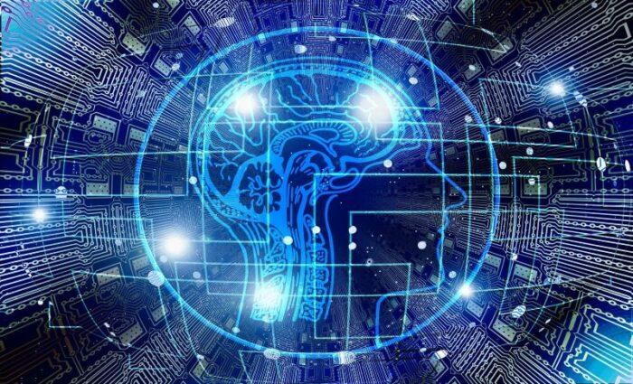 Visuel d'illustration de l'article Le cerveau, en bref